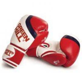 GREEN HILL R5 BOXING GLOVES