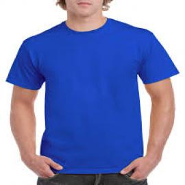 GREEN HILL BLUE CASUAL T-SHIRT